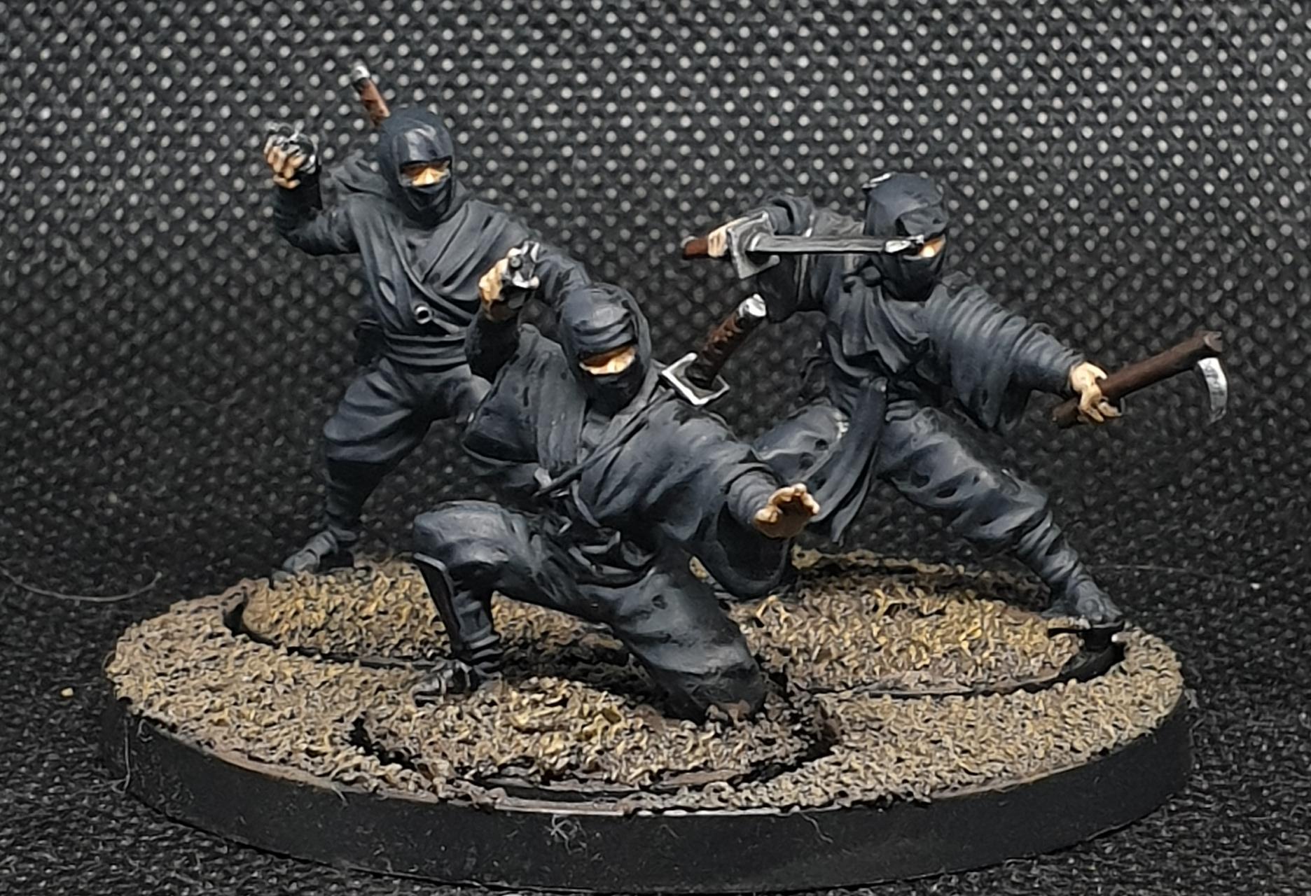 Ninjas, Test Of Honour
