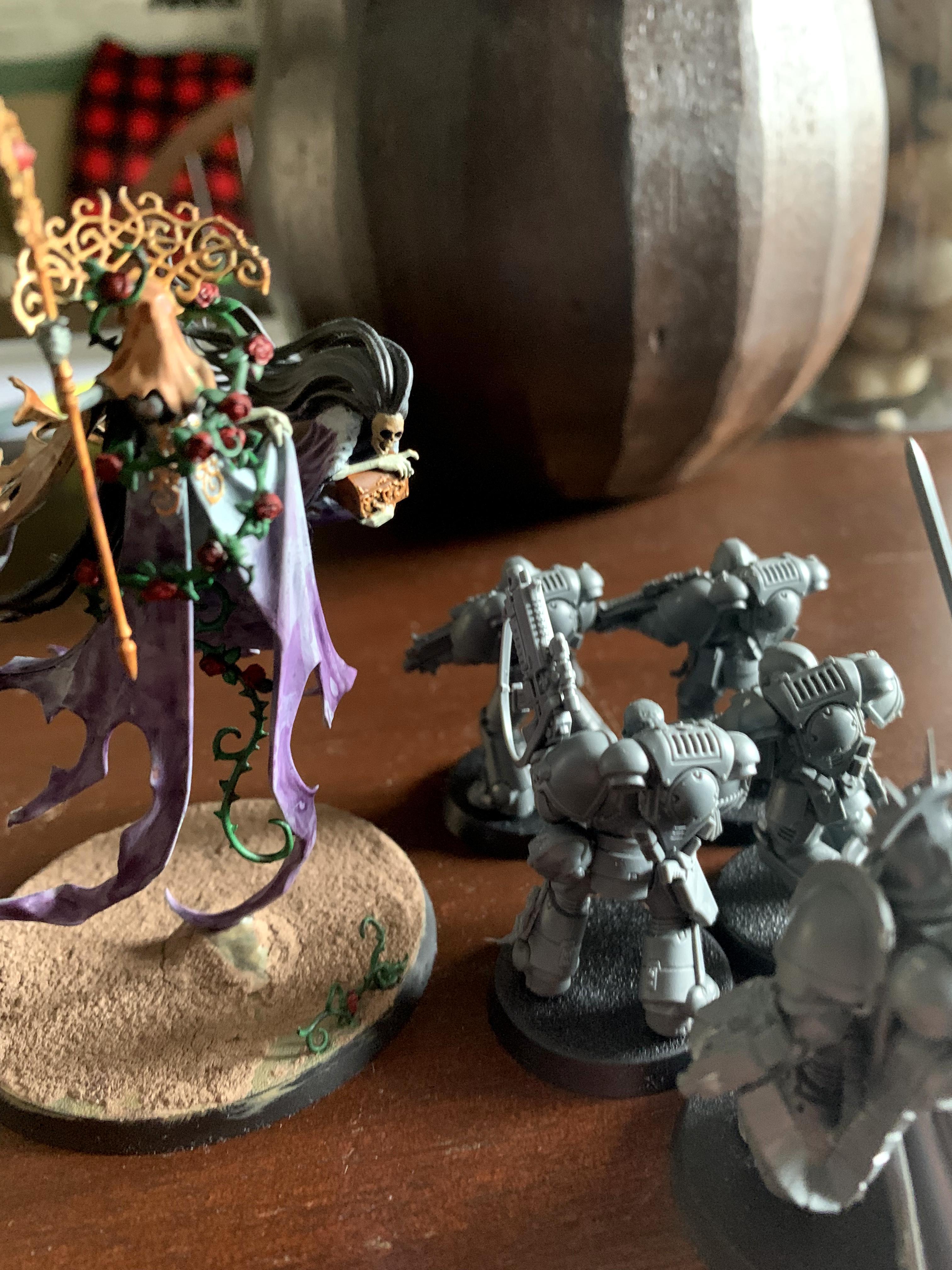 Olynder in Combat