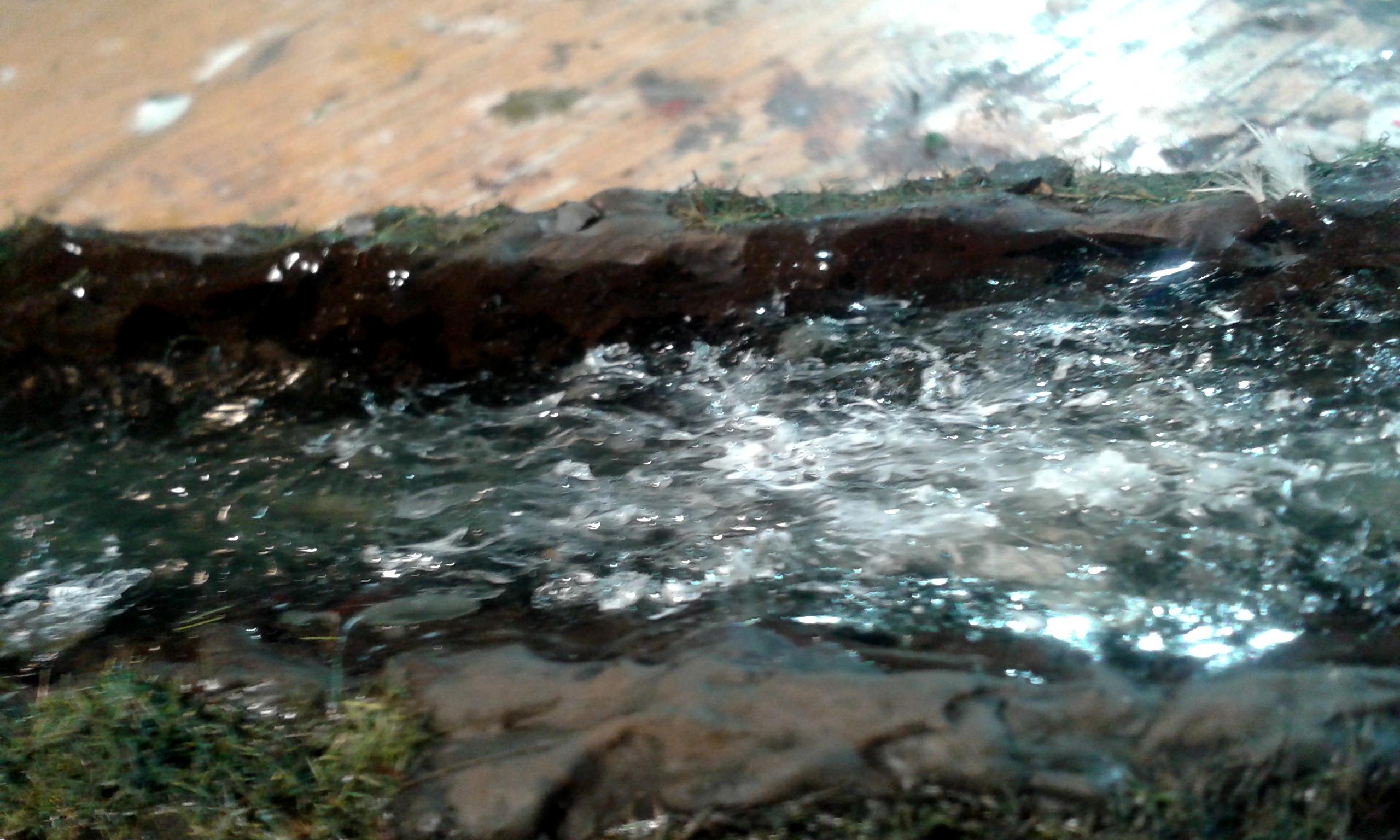 Orsino's River 2