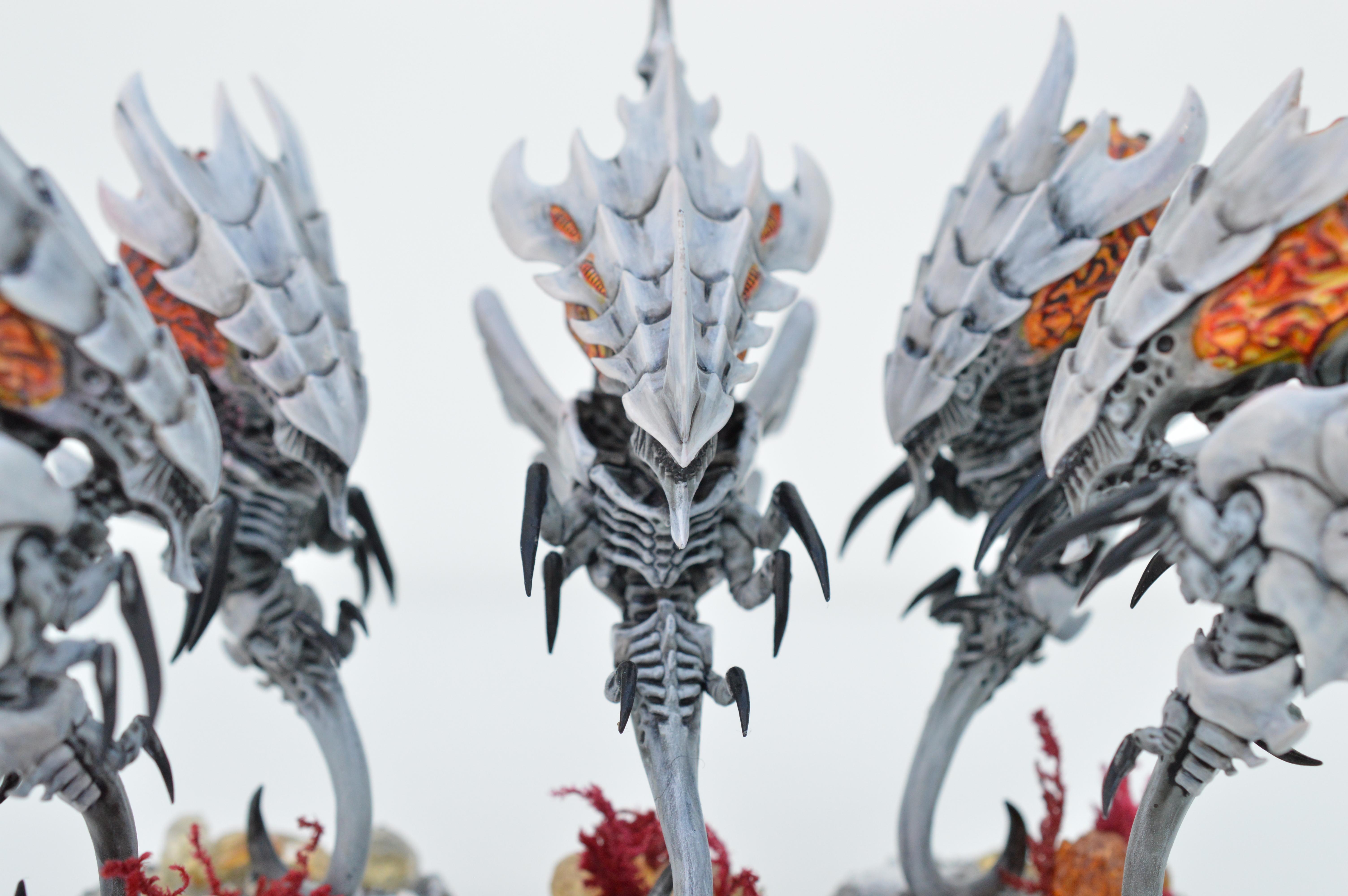 Black, Hive Fleet Typhon, Red, Tyranids, White