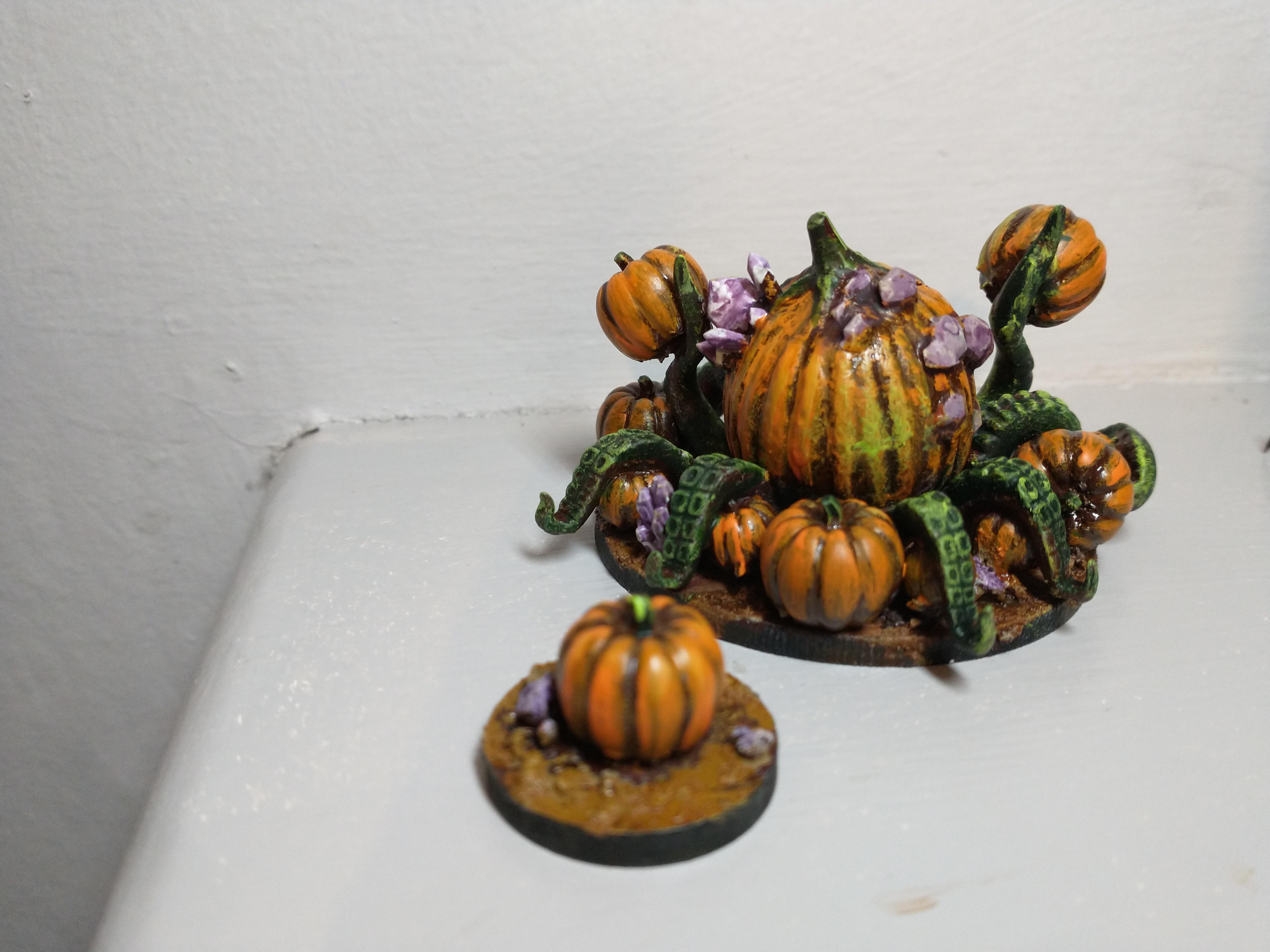 Back of pumpking